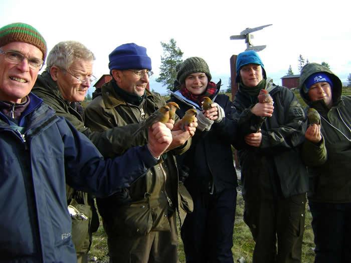 Bird ringers in Sweden