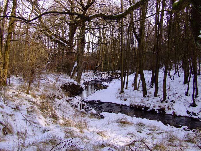 snowy Risedale beck
