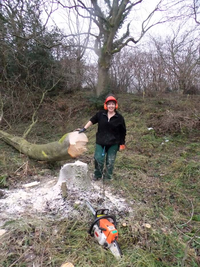 Marion with the felled tree