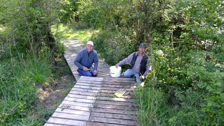 Repairing boardwalk on the heathland