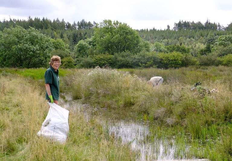 Working on the wetland