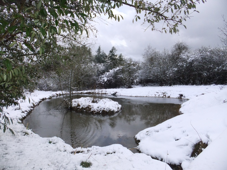 Voley ponds in snow