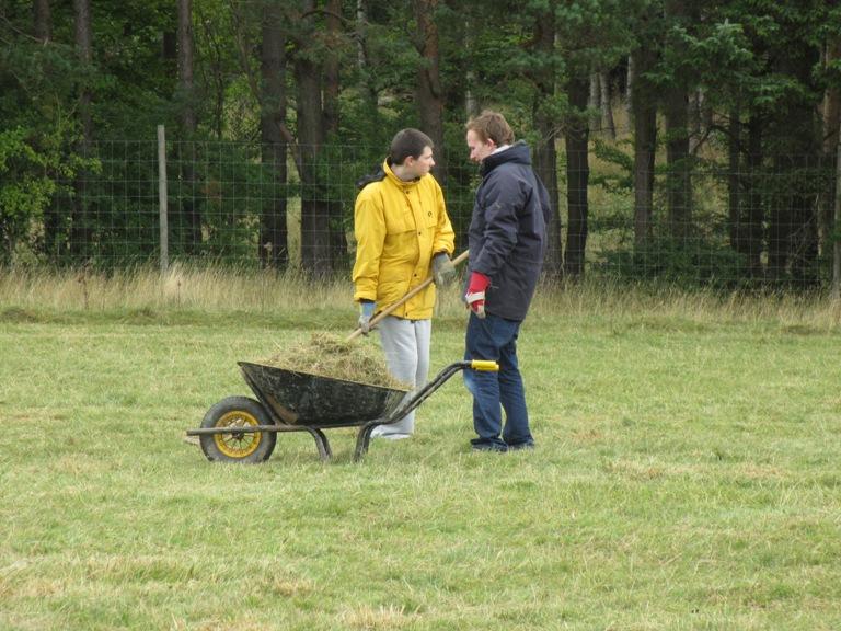 Gathering_hay