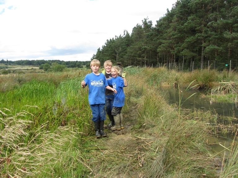 Team_wetland