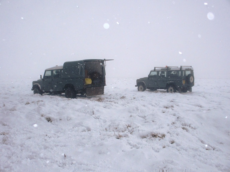 Landrovers in snow