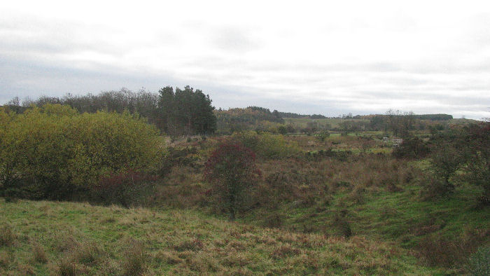 Autumn across the moor