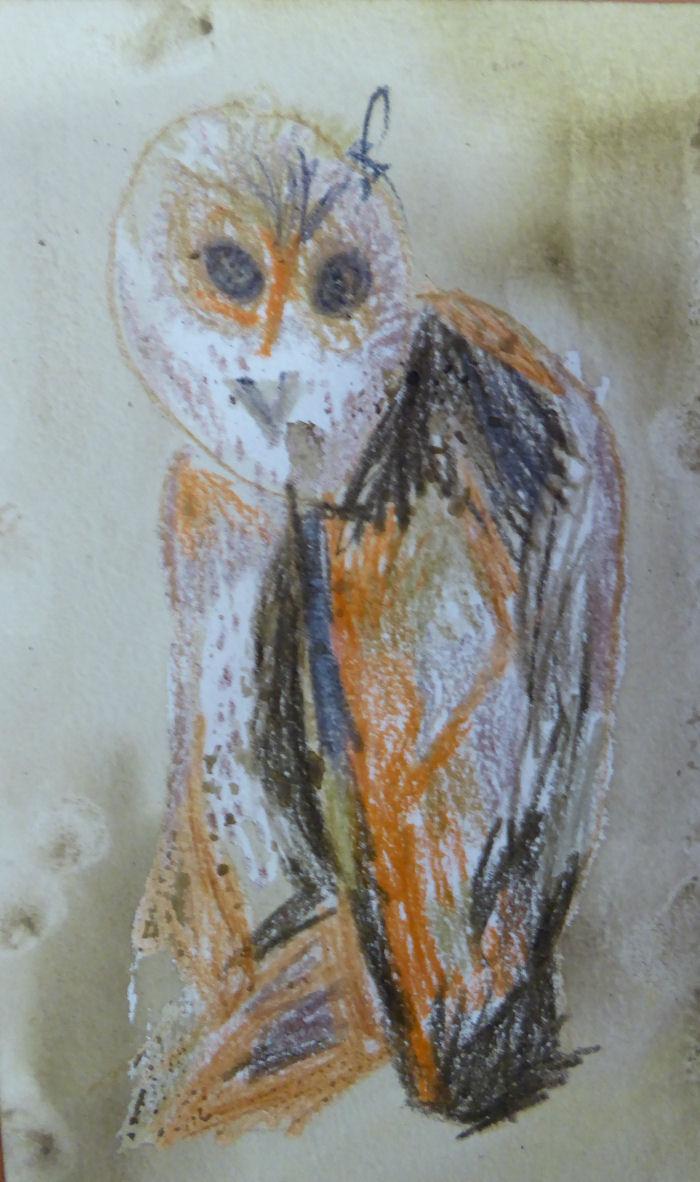 Artful Owl work