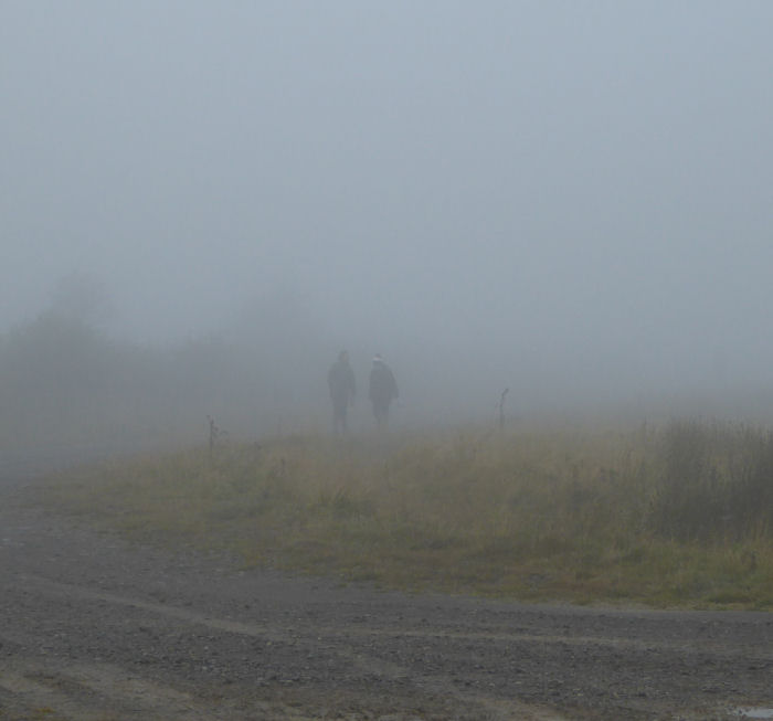 Bird ringers appearing out of the mist