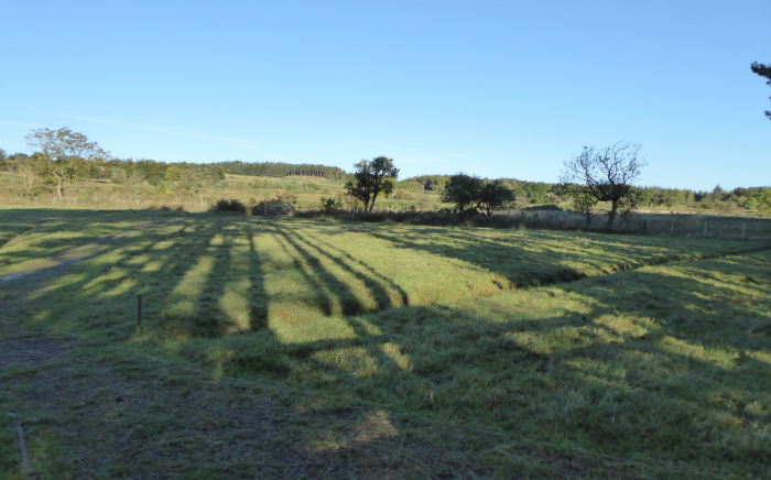 Lengthening shadows
